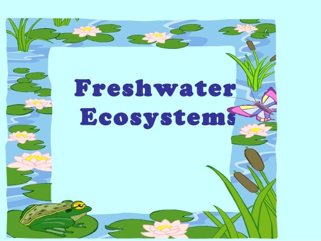 Freshwater Biome Facts