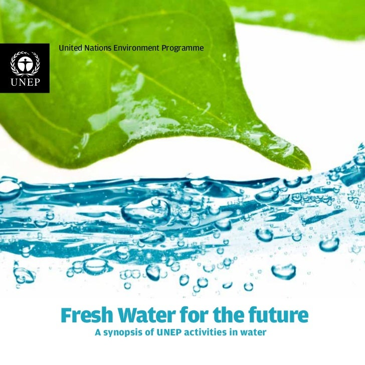 United Nations Environment ProgrammeFresh Water for the future        A synopsis of UNEP activities in water
