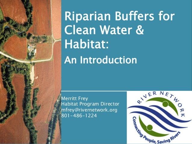 Riparian Buffers for Clean Water &  Habitat: An Introduction  Merritt Frey Habitat Program Director mfrey@rivernetwork.or...