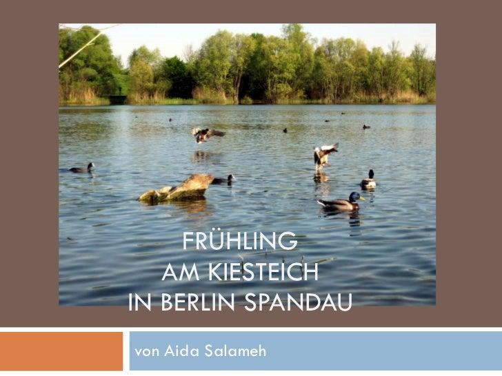 FRÜHLING AM KIESTEICH IN BERLIN SPANDAU von Aida Salameh