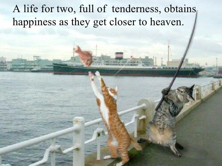 Les meilleures photos de L'année 2005 D'après NBC A life for two, full of  tenderness, obtains happiness as they get close...