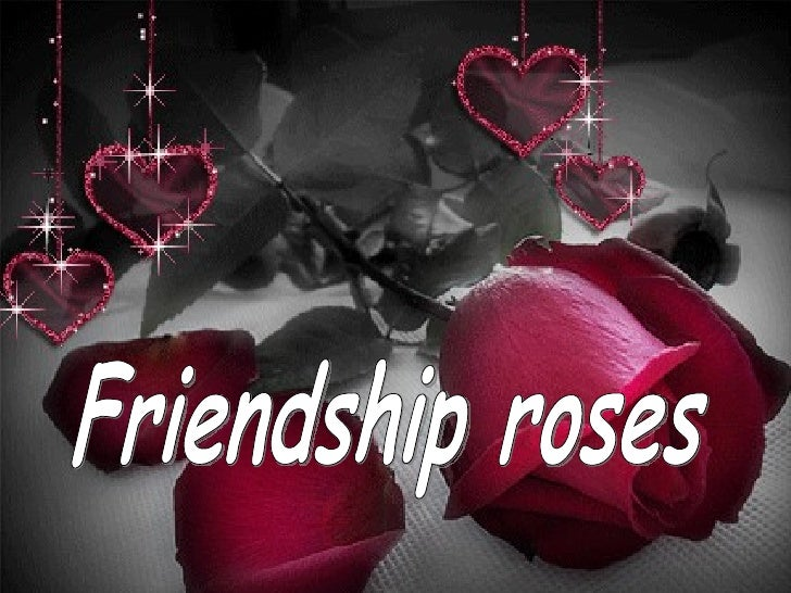 Friendship roses  ildy