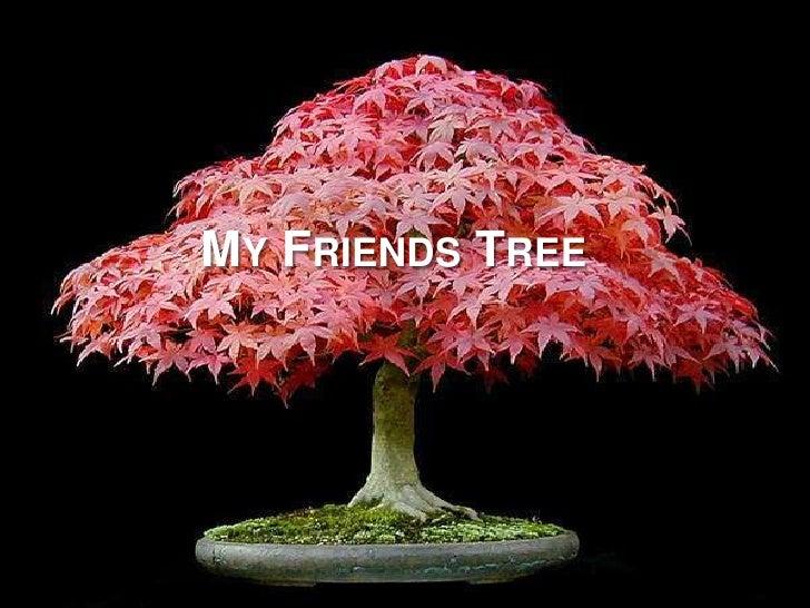 My FriendsTree<br />