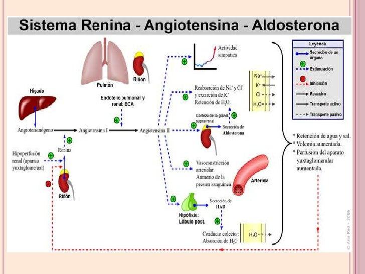 Cialis 5 mg e pressione arteriosa