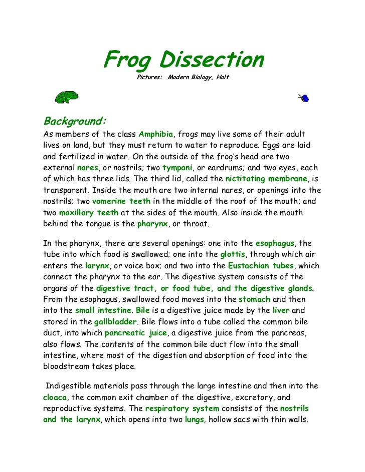 Frog dissection lab biology junction