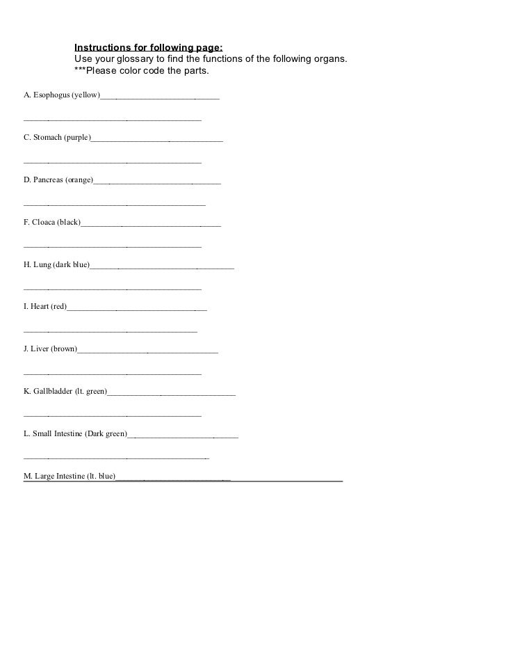 Frog dissection printable worksheet