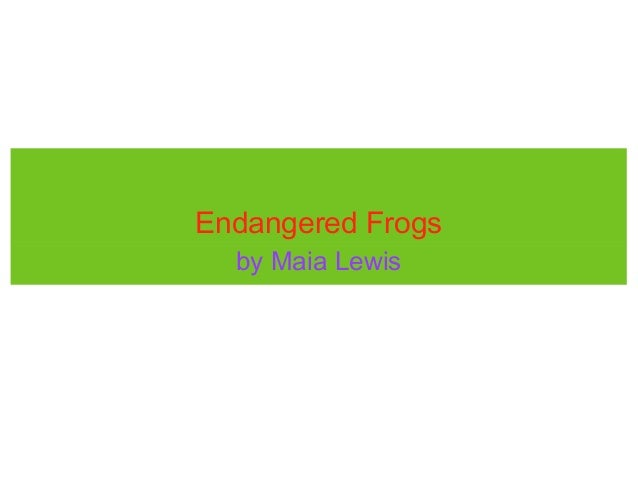 Endangered Frogs  by Maia Lewis