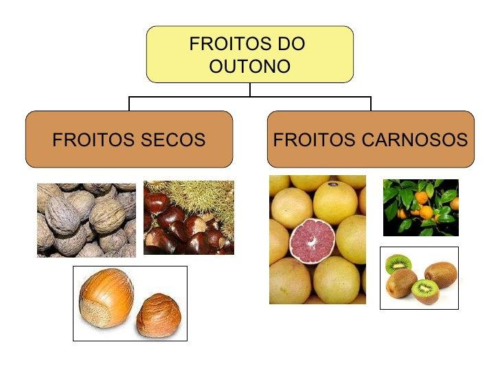FROITOS DO  OUTONO FROITOS SECOS FROITOS CARNOSOS