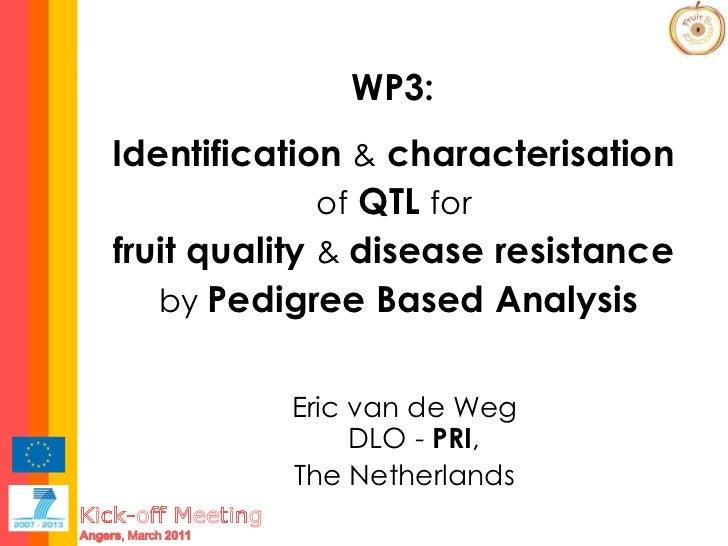Eric van de Weg DLO -  PRI ,  The Netherlands WP3:   Identification  &  characterisation  of  QTL  for  fruit quality  &  ...