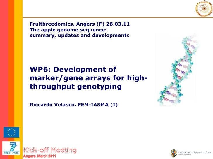 Fruitbreedomics, Angers (F) 28.03.11   The apple genome sequence:  summary, updates and developments WP6: Development of m...