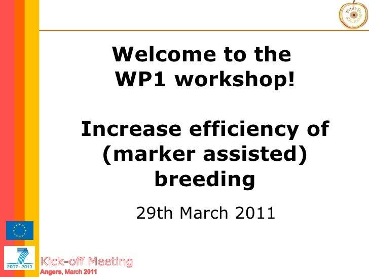 FruitBreedomics KOM Stakeholders meeting 31-03-2011 11 WP1 breeders workshop