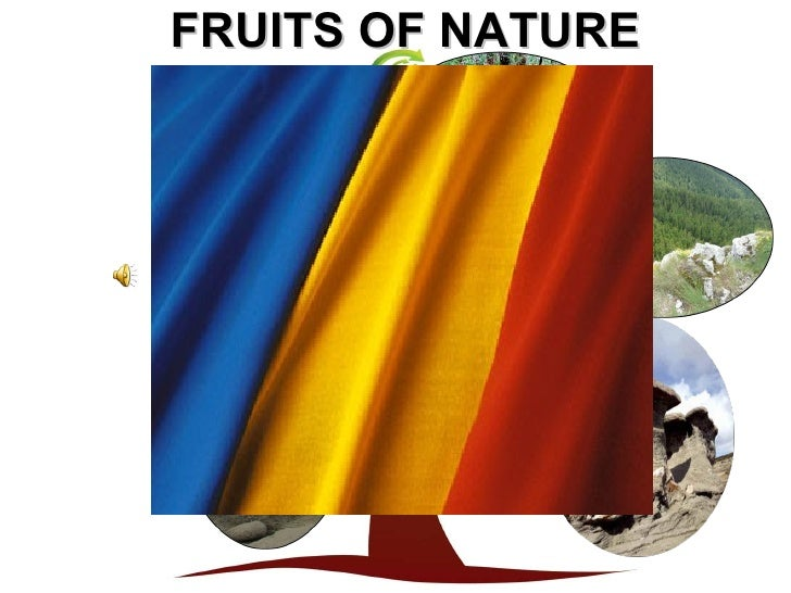 Fruits of nature