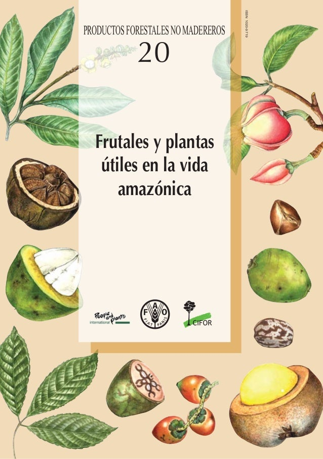 I2360S/1/05.12 ISBN 978-92-5-307007-7 ISSN 1020-9719 9 7 8 9 2 5 3 0 7 0 0 7 7 ISSN1020-9719 20 20FAOPRODUCTOSFORESTALESNO...