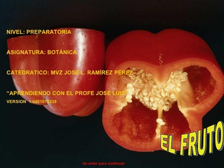 Fruto y semilla