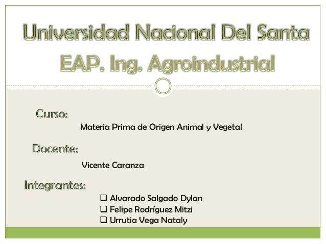 Materia Prima de Origen Animal y VegetalVicente Caranza     Alvarado Salgado Dylan     Felipe Rodríguez Mitzi     Urrut...