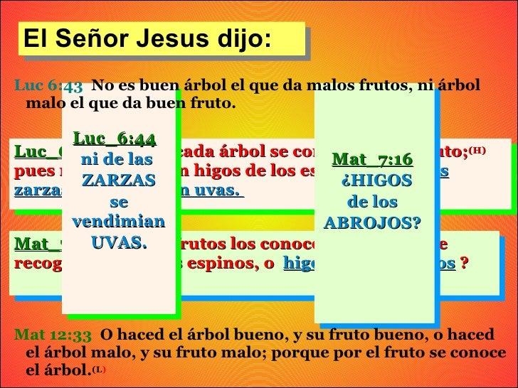 El Señor Jesus dijo:Luc 6:43 No es buen árbol el que da malos frutos, ni árbol malo el que da buen fruto.       Luc_6:44Lu...