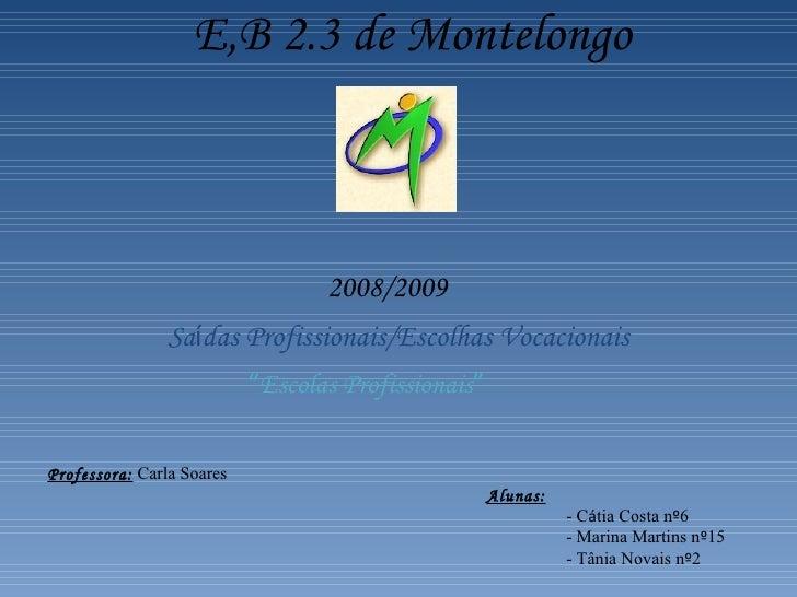 "E,B 2.3 de Montelongo 2008/2009 Sa í das Profissionais/Escolhas Vocacionais "" Escolas Profissionais "" Professora:  Carla S..."