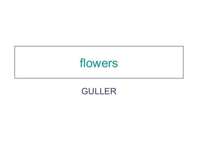 flowers GULLER