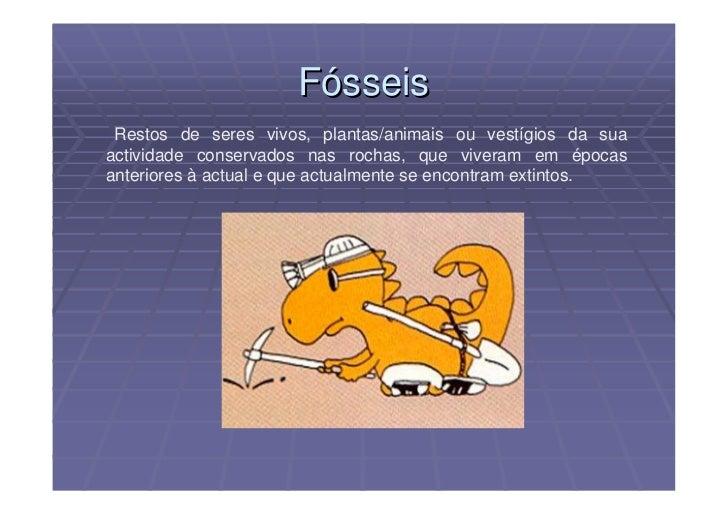 Fósseis  Restos de seres vivos, plantas/animais ou vestígios da sua actividade conservados nas rochas, que viveram em époc...