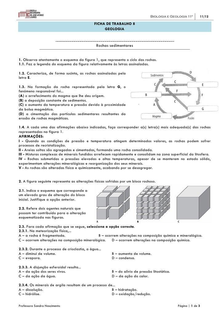 Biologia e Geologia 11º       11/12                                              FICHA DE TRABALHO 8                      ...