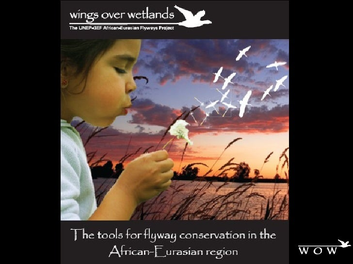 The Flyway Training Kit - An Innovative Tool for Flyway Conservation in the  African–Eurasian Region