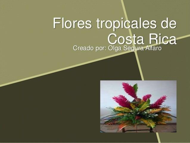 Flores tropicales de Costa RicaCreado por: Olga Segura Alfaro