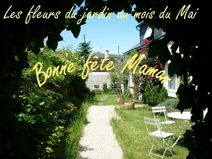 Les fleurs du jardin au mois du Mai             Album photo             par manolito