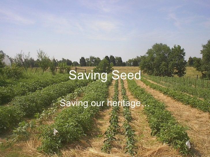 Saving Seed Saving our heritage…