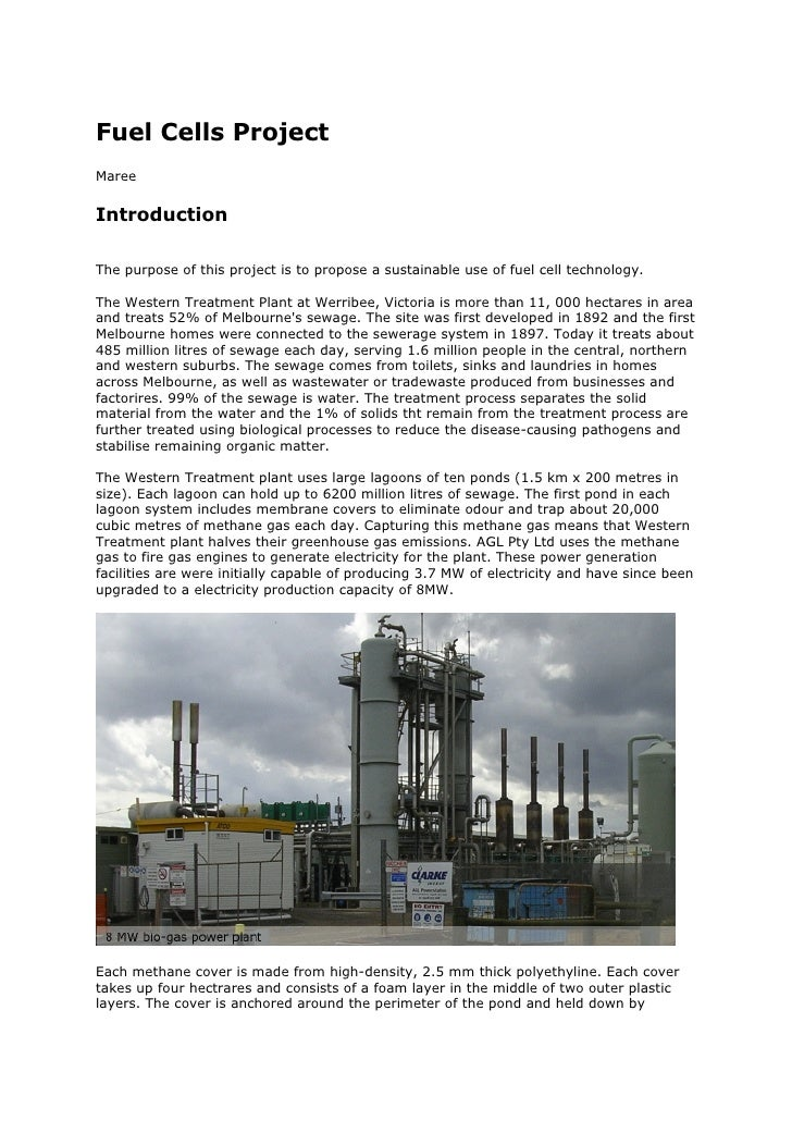 Fuel Cells Project Maree   Introduction  The purpose of this project is to propose a sustainable use of fuel cell technolo...