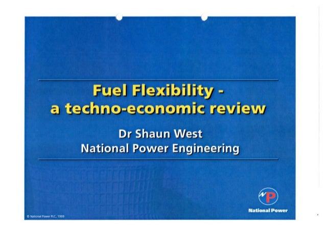 Fuel Flexibility - a techno-economic review