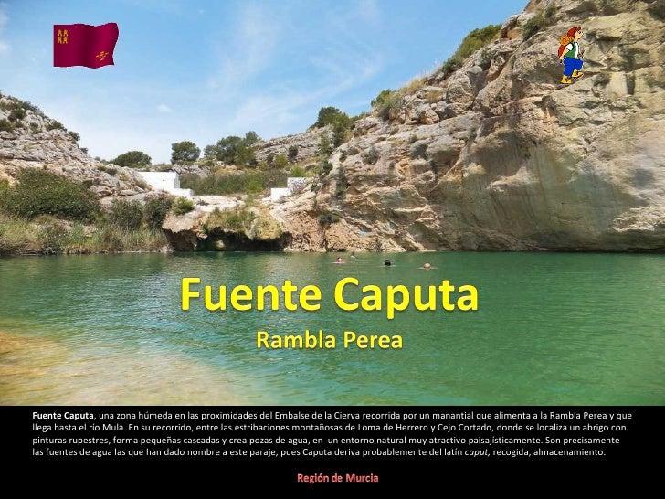 Fuente Caputa, una zona húmeda en las proximidades del Embalse de la Cierva recorrida por un manantial que alimenta a la R...