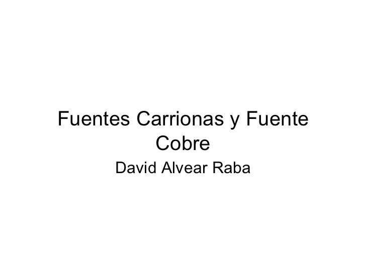 Fuentes Carrionas y Fuente         Cobre     David Alvear Raba