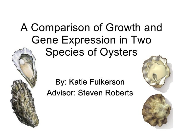 A Comparison of Growth and Gene Expression in Two Species of Oysters By: Katie Fulkerson Advisor: Steven Roberts By: Katie...