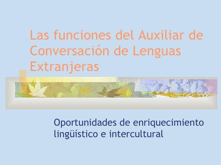 Funciones Language assistants