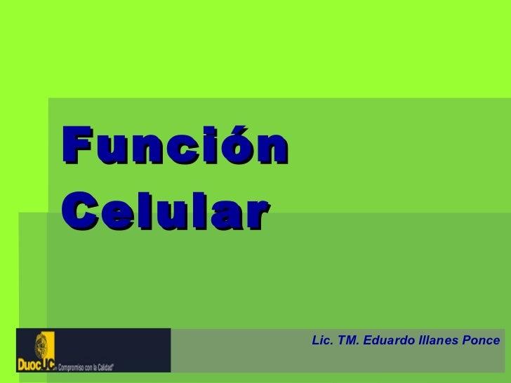 Función Celular Lic. TM. Eduardo Illanes Ponce