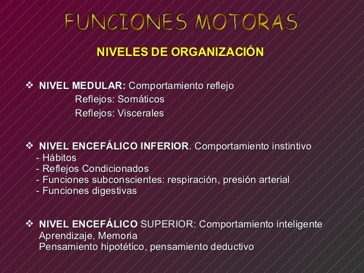 Funciones Motoras. Fisiologia