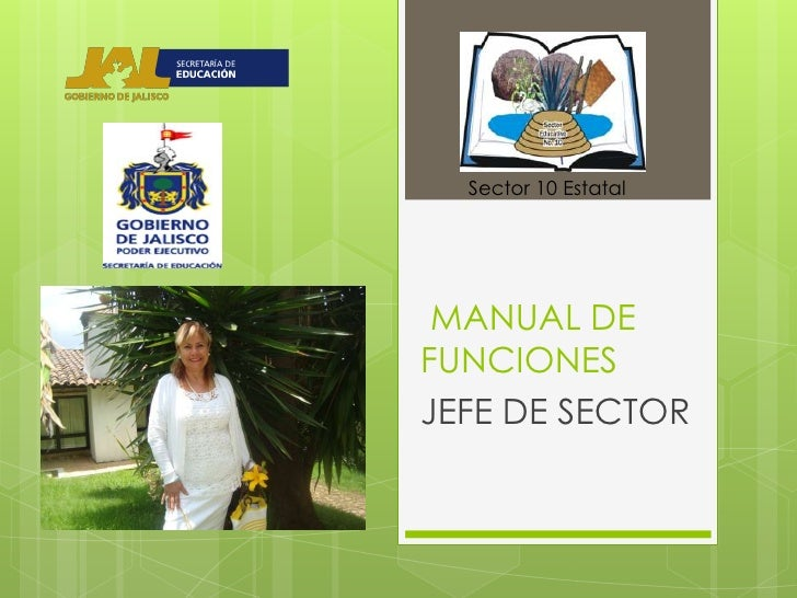 Sector 10 Estatal MANUAL DEFUNCIONESJEFE DE SECTOR