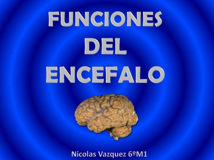 Funciones del encefalo