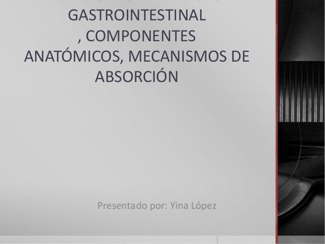 GASTROINTESTINAL      , COMPONENTESANATÓMICOS, MECANISMOS DE         ABSORCIÓN        Presentado por: Yina López