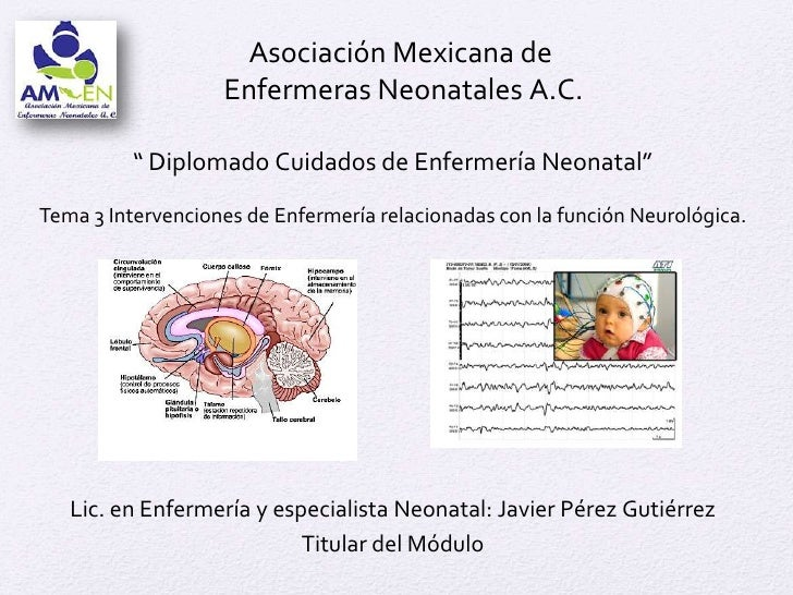 Funcion neurologica