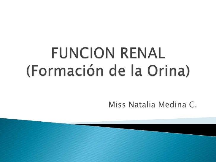 FUNCION RENAL(Formación de la Orina)<br />Miss Natalia Medina C.<br />