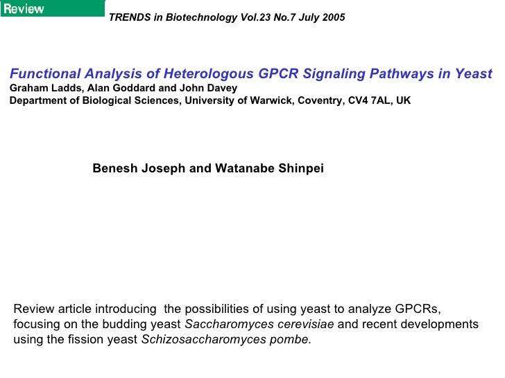 Functional Analysis Of Heterologous Gpcr Signaling Pathways In Yeast