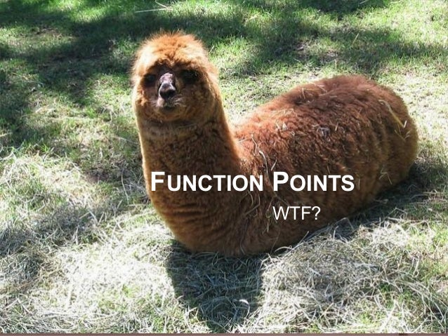 FUNCTION POINTS        WTF?