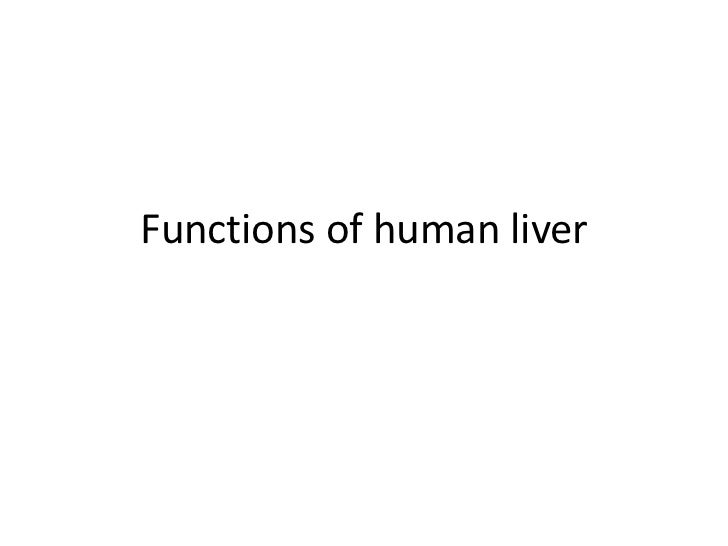 Functions of human liver