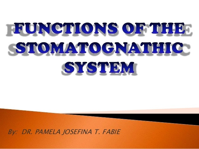 Functions of Stomatognathic System