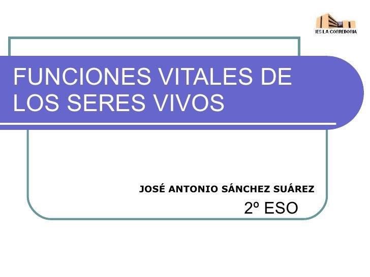 FUNCIONES VITALES DE LOS SERES VIVOS 2º ESO JOSÉ ANTONIO SÁNCHEZ SUÁREZ