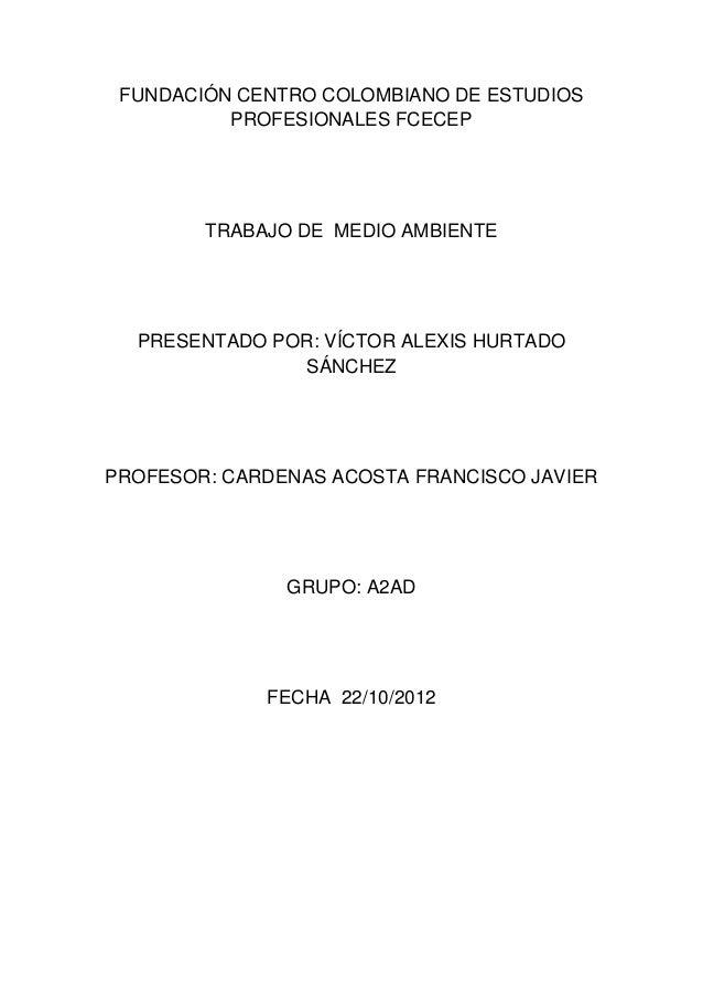 FUNDACIÓN CENTRO COLOMBIANO DE ESTUDIOSPROFESIONALES FCECEPTRABAJO DE MEDIO AMBIENTEPRESENTADO POR: VÍCTOR ALEXIS HURTADOS...