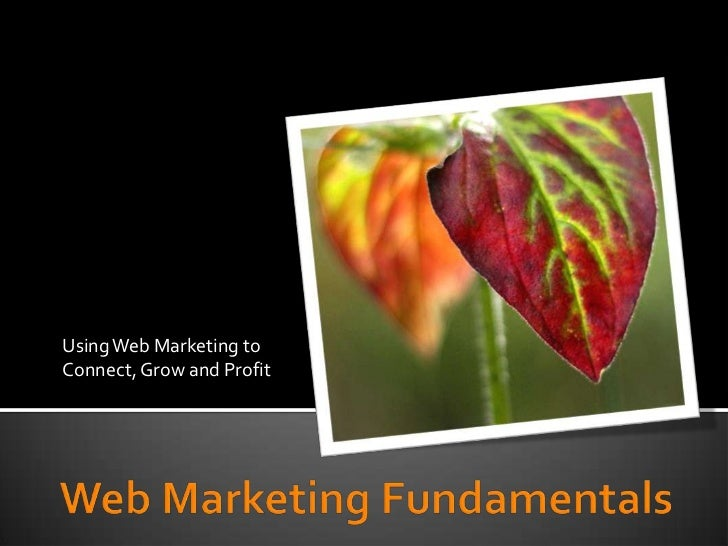 Using Web Marketing to Connect, Grow and Profit<br />Web Marketing Fundamentals<br />