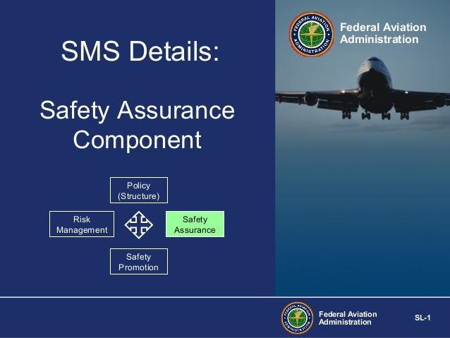 SMS Details:  Federal Aviation Administration  Safety Assurance Component Policy (Structure) Risk Management  Safety Assur...