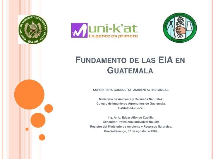 Fundamento De Las Eia En Guatemala